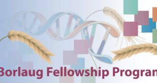 Borlaug International Fellowship Program